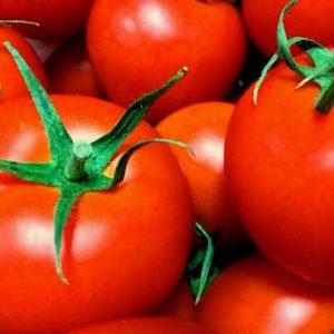 トマト関連